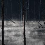 朝霧が舞う立ち枯れの湖 御岳自然湖の紅葉と、王滝食堂のいのぶた丼