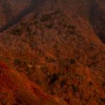 秋の奥日光 紅葉に彩られた八丁出島と、トンカツ浅井のソースカツ丼